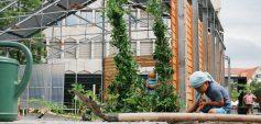 """""""Boden g'scheit nutzen"""" lautet das Motto des LandLuft Baukulturgemeinde-Preises 2021 © LandLuft / Foto: Baukulturgemeinde Lustenau"""