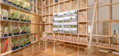 DAZ Ausstellung: Sorge um den Bestand (c) Leon Lenk