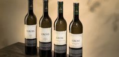 Anstatt des Jahrgangs 2019 zeigen heuer die Fassreserven des Jahrgangs 2015 wie sehr Gross-Weine vom unforcierten Ausbau profitieren.